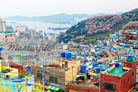 Gamcheon Culture Village, Busan, South Korea. Stock Photo - Budget Royalty-Free, Image code: 400-08051912