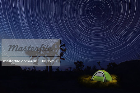 Tent Camping at Night in Joshua Tree Park Stock Photo - Budget Royalty-Free, Image code: 400-08095257