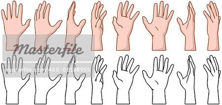 Vector illustrations pack of 360 degree rotation of a human palm. Stock Photo - Budget Royalty-Free, Image code: 400-08188955