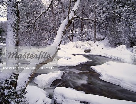 Sydenham River in Winter, Inglis Falls Park, Ontario, Canada