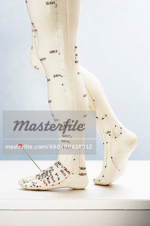 Acupuncture Model with Pin in Foot Stock Photo - Premium Royalty-Free, Image code: 600-00618012