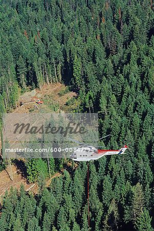 Heli-logging, British Columbia, Canada Stock Photo - Premium Royalty-Free, Image code: 600-00847294