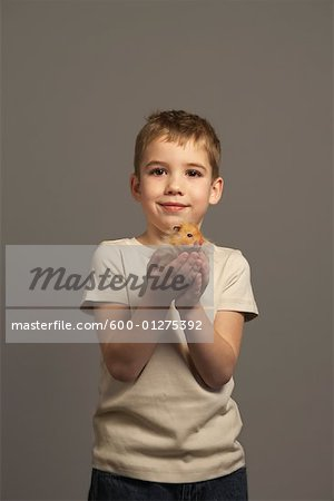 Little Boy Holding Hamster Stock Photo - Premium Royalty-Free, Image code: 600-01275392