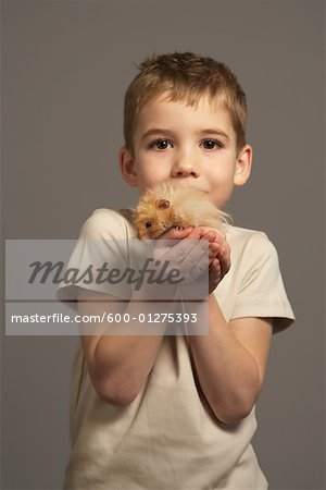 Little Boy Holding Hamster Stock Photo - Premium Royalty-Free, Image code: 600-01275393