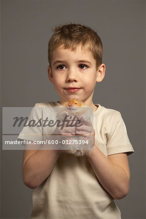Little Boy Holding Hamster Stock Photo - Premium Royalty-Free, Image code: 600-01275394