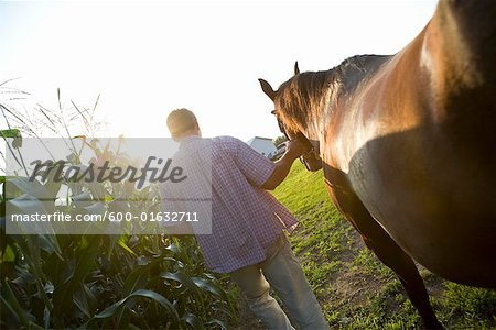 Farmer Leading Horse Stock Photo - Premium Royalty-Free, Image code: 600-01632711
