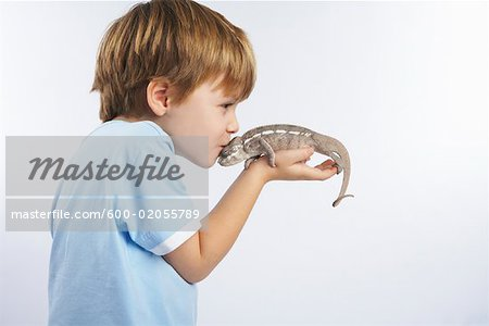 Boy Holding Lizard Stock Photo - Premium Royalty-Free, Image code: 600-02055789
