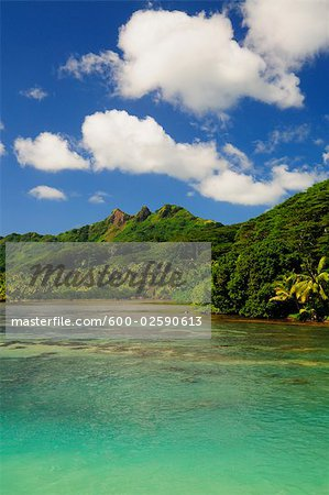 Overview of Bay, Huahine, French Polynesia Stock Photo - Premium Royalty-Free, Image code: 600-02590613