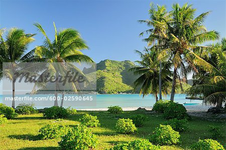 View of Mountain from Island, Maupiti, French Polynesia Stock Photo - Premium Royalty-Free, Image code: 600-02590645