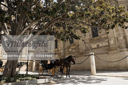 Horse Drawn Carriage, Seville, Spain Stock Photo - Premium Royalty-Free, Image code: 600-02669985