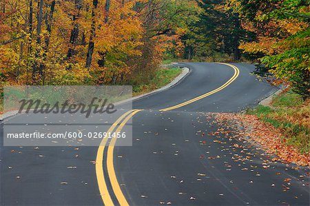 Road Through Forest in Autumn, Vermont, USA Stock Photo - Premium Royalty-Free, Image code: 600-02691456