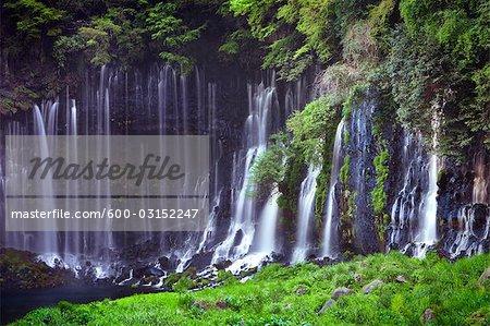 Shiraito Falls, Fujinomiya, Fuji-Hakone-Izu National Park, Shizuoka Prefecture, Japan