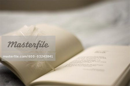 Book and Feather Bookmark Stock Photo - Premium Royalty-Free, Image code: 600-03243841
