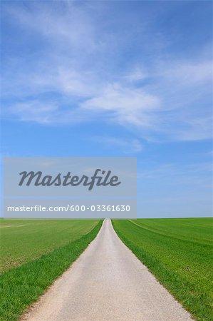 Path Through Fields in Spring, Halbturn, Burgenland, Austria