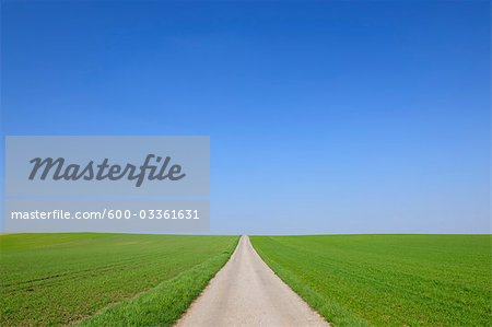 Path Through Fields in Spring, Halbturn, Burgenland, Austria