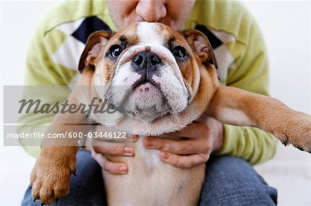 Man Holding Dog Stock Photo - Premium Royalty-Free, Image code: 600-03446122