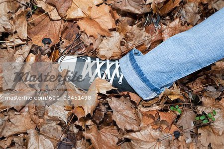 Woman Walking in Autumn Leaves Stock Photo - Premium Royalty-Free, Image code: 600-03451498