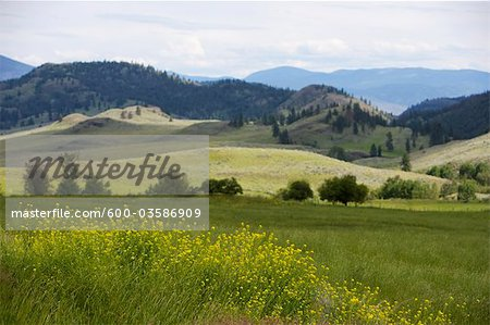 Landscape, British Columbia, Canada Stock Photo - Premium Royalty-Free, Image code: 600-03586909