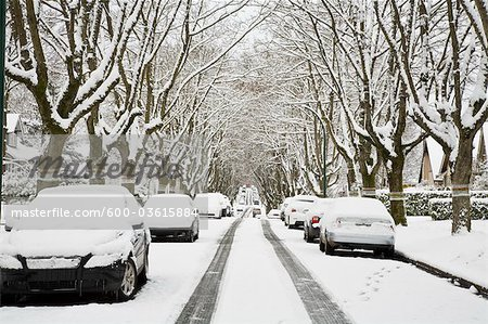 Winter, West Point Grey, Vancouver, British Columbia, Canada Stock Photo - Premium Royalty-Free, Image code: 600-03615884