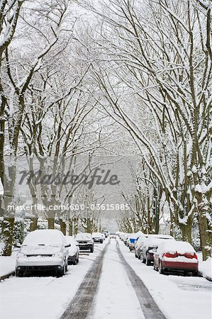 Winter, West Point Grey, Vancouver, British Columbia, Canada Stock Photo - Premium Royalty-Free, Image code: 600-03615885