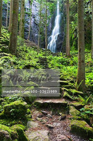 Steps to Gertelbach Waterfalls, Black Forest, Baden-Wurttemberg, Germany Stock Photo - Premium Royalty-Free, Image code: 600-03615989