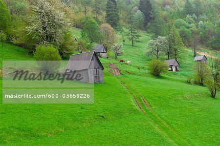 Soca Valley, Slovenia Stock Photo - Premium Royalty-Free, Image code: 600-03659226