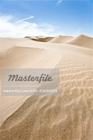 Imperial Sand Dunes Recreation Area, California, USA Stock Photo - Premium Royalty-Free, Image code: 600-03696929