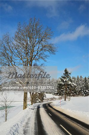 Country Road, Black Forest, Schwarzwald-Baar, Baden-Wurttemberg, Germany Stock Photo - Premium Royalty-Free, Image code: 600-03737701