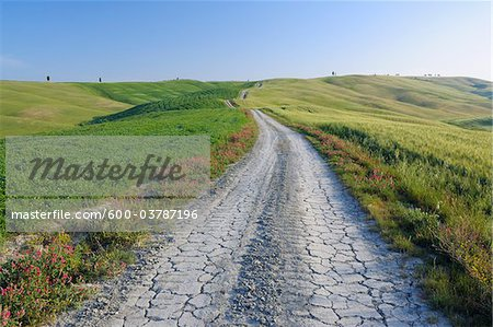 Dirt Road through Fields and Hills, Val d'Orcia, San Quirico d'Orcia, Siena Province, Tuscany, Italy Stock Photo - Premium Royalty-Free, Image code: 600-03787196