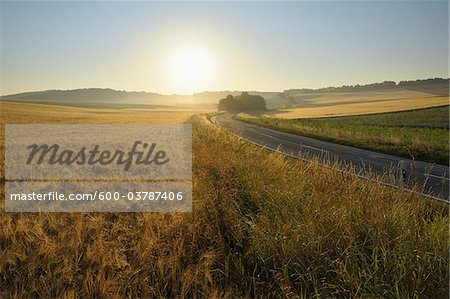 Country Road and Wheat Fields, Hettstadt, Wurzburg District, Franconia, Bavaria, Germany Stock Photo - Premium Royalty-Free, Image code: 600-03787406