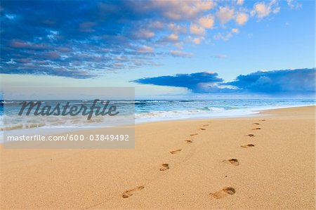 Footprints in Sand, Baldwin Beach Park, Maui, Hawaii, USA Stock Photo - Premium Royalty-Free, Image code: 600-03849492