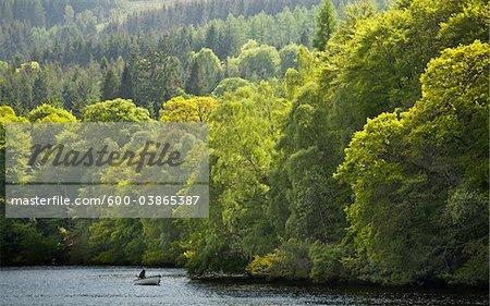 Loch Faskally, Perth and Kinross, Tayside, Scotland