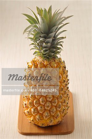 Pineapple Stock Photo - Premium Royalty-Free, Image code: 600-04625245