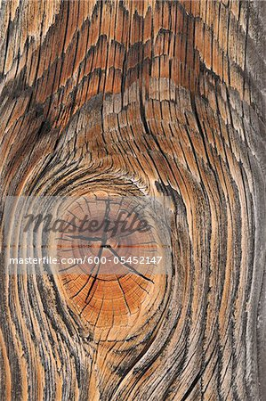Wooden Board, Lermoss, Reutte, Tyrol, Austria Stock Photo - Premium Royalty-Free, Image code: 600-05452147