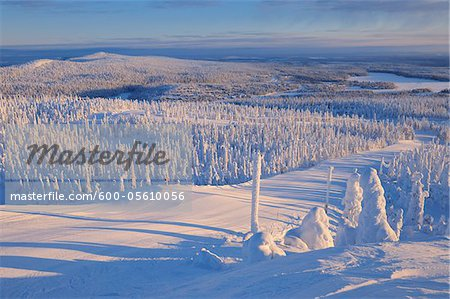 Snow Covered Landscape, Rukatunturi, Kuusamo, Northern Ostrobothnia, Finland Stock Photo - Premium Royalty-Free, Image code: 600-05610056