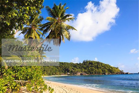 Shoreline of Anse Takamaka, Mahe, Seychelles Stock Photo - Premium Royalty-Free, Image code: 600-05786222