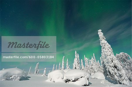 Northern Lights, Nissi, Nordoesterbotten, Finland Stock Photo - Premium Royalty-Free, Image code: 600-05803184