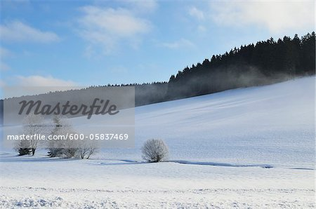 Winter Landscape, Mittelschollach, Black Forest, Baden-Wurttemberg, Germany Stock Photo - Premium Royalty-Free, Image code: 600-05837469