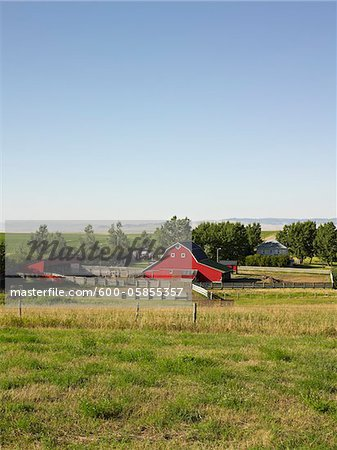 Farm, Pincher Creek, Alberta, Canada Stock Photo - Premium Royalty-Free, Image code: 600-05855357