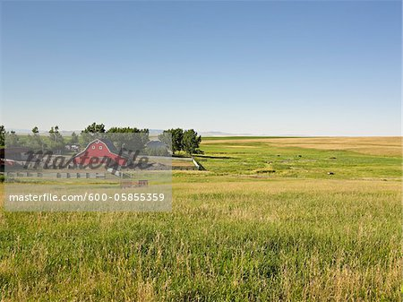 Farm, Pincher Creek, Alberta, Canada Stock Photo - Premium Royalty-Free, Image code: 600-05855359