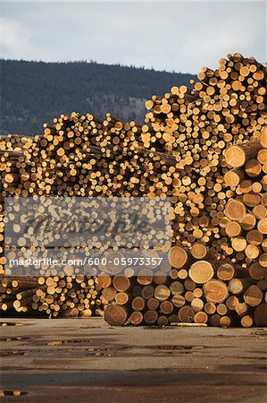 Logs, Merritt, Nicola Country, British Columbia, Canada Stock Photo - Premium Royalty-Free, Image code: 600-05973357