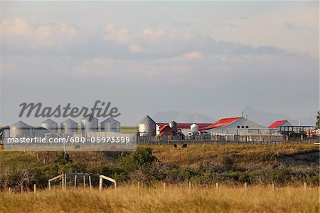 Farm Buildings, Mountains in Distance, Utopia Farm, Pincher Creek, Alberta, Canada Stock Photo - Premium Royalty-Free, Image code: 600-05973399
