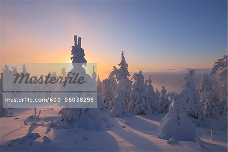 Snow Covered Trees at Sunset, Fichtelberg, Ore Mountains, Saxony, Germany Stock Photo - Premium Royalty-Free, Image code: 600-06038298