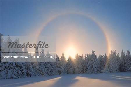 Halo and Snow Covered Trees, Fichtelberg, Ore Mountains, Saxony, Germany Stock Photo - Premium Royalty-Free, Image code: 600-06038302