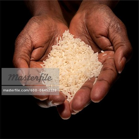 Close-up of Woman's Hands holding Rice, Studio Shot Stock Photo - Premium Royalty-Free, Image code: 600-06452128