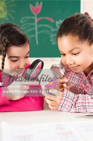 Portrait of Girls Looking at Flower in Classroom, Baden-Wurttemberg, Germany Stock Photo - Premium Royalty-Free, Image code: 600-06548578
