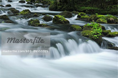 Orbe River, Vallorbe, Jura Mountains, Canton of Vaud, Switzerland Stock Photo - Premium Royalty-Free, Image code: 600-06553325