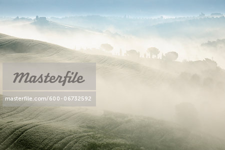 Typical Tuscany landscape in morning with fog near San Quirico d'Orcia. Val d'Orcia, Orcia Valley, Siena district, Tuscany, Toscana, Italy. Stock Photo - Premium Royalty-Free, Image code: 600-06732592