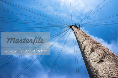 Telephone Pole with Wires leading in all Directions, North London, England Stock Photo - Premium Royalty-Free, Image code: 600-06773193
