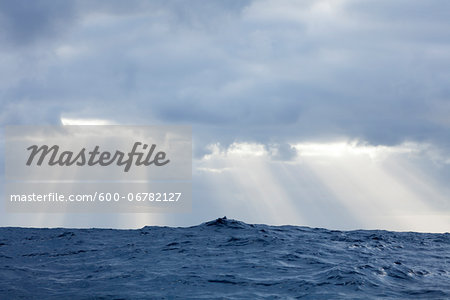 Sun rays shine through clouds casting beams of light after a storm in the Atlantic Ocean Stock Photo - Premium Royalty-Free, Image code: 600-06782127